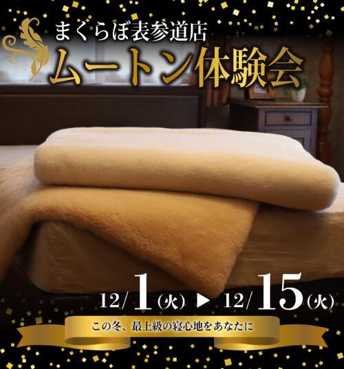 まくらぼ表参道店 ムートン体験会 12/1(火)-12/15(火)